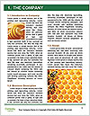 0000083420 Word Template - Page 3