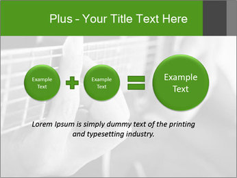 0000083424 PowerPoint Templates - Slide 75