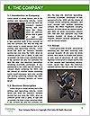 0000083424 Word Template - Page 3