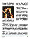 0000083424 Word Template - Page 4