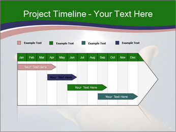 0000083436 PowerPoint Template - Slide 25