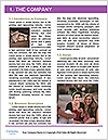 0000083438 Word Template - Page 3
