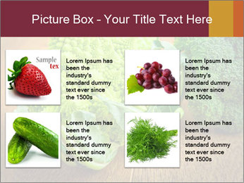 0000083452 PowerPoint Template - Slide 14