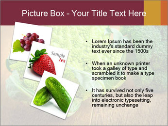 0000083452 PowerPoint Template - Slide 17
