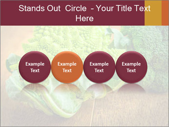 0000083452 PowerPoint Template - Slide 76