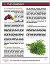 0000083452 Word Templates - Page 3