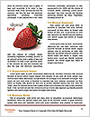 0000083452 Word Templates - Page 4