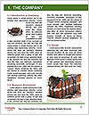 0000083453 Word Template - Page 3