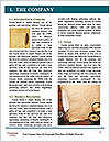 0000083455 Word Template - Page 3