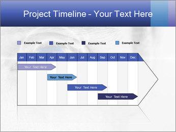 0000083469 PowerPoint Templates - Slide 25