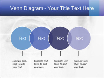 0000083469 PowerPoint Templates - Slide 32