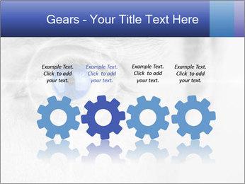 0000083469 PowerPoint Templates - Slide 48