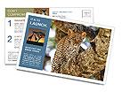 0000083473 Postcard Templates