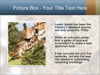 0000083473 PowerPoint Templates - Slide 13