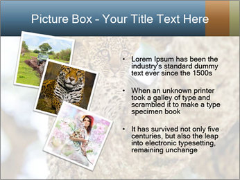 0000083473 PowerPoint Templates - Slide 17