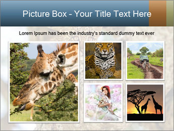 0000083473 PowerPoint Templates - Slide 19