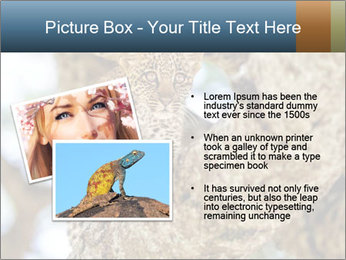 0000083473 PowerPoint Templates - Slide 20