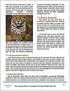 0000083473 Word Templates - Page 4