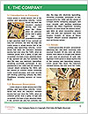 0000083479 Word Template - Page 3