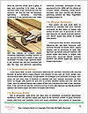 0000083479 Word Template - Page 4