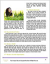 0000083480 Word Templates - Page 4