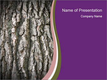 0000083482 PowerPoint Template - Slide 1