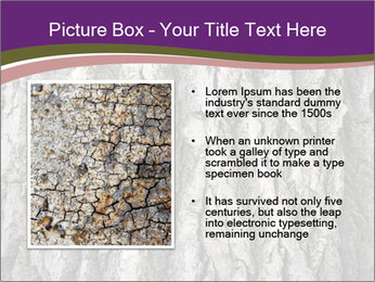 0000083482 PowerPoint Template - Slide 13