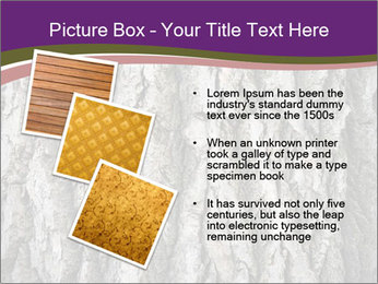 0000083482 PowerPoint Template - Slide 17