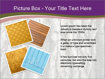 0000083482 PowerPoint Template - Slide 23