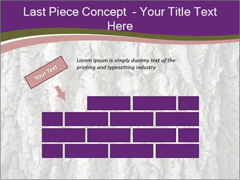 0000083482 PowerPoint Template - Slide 46