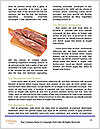 0000083490 Word Template - Page 4
