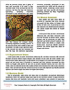 0000083496 Word Template - Page 4