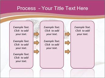 0000083498 PowerPoint Template - Slide 86