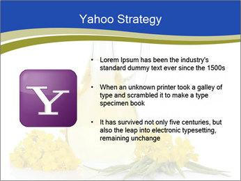 0000083509 PowerPoint Template - Slide 11