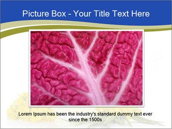 0000083509 PowerPoint Template - Slide 15