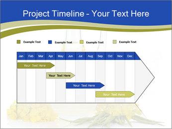 0000083509 PowerPoint Template - Slide 25