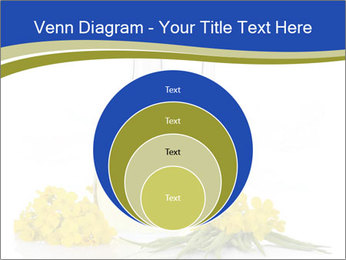 0000083509 PowerPoint Template - Slide 34