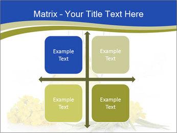 0000083509 PowerPoint Template - Slide 37