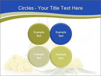 0000083509 PowerPoint Template - Slide 38