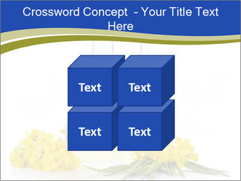 0000083509 PowerPoint Template - Slide 39