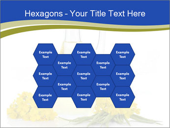 0000083509 PowerPoint Template - Slide 44