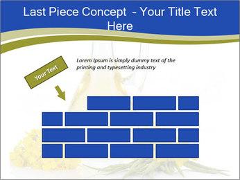 0000083509 PowerPoint Template - Slide 46
