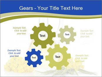 0000083509 PowerPoint Template - Slide 47