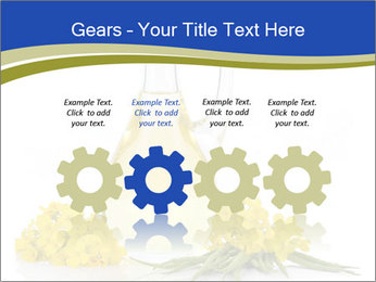 0000083509 PowerPoint Template - Slide 48