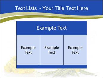 0000083509 PowerPoint Template - Slide 59