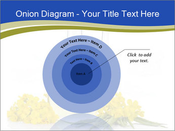 0000083509 PowerPoint Template - Slide 61