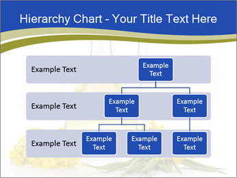 0000083509 PowerPoint Template - Slide 67