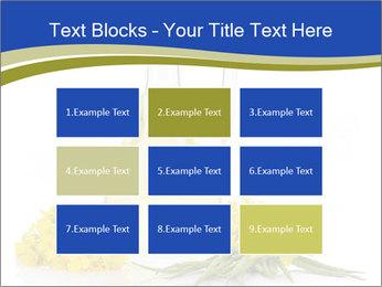 0000083509 PowerPoint Template - Slide 68