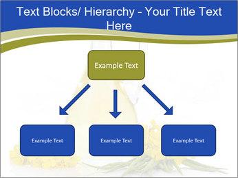 0000083509 PowerPoint Template - Slide 69