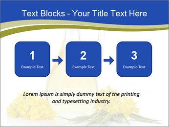 0000083509 PowerPoint Template - Slide 71